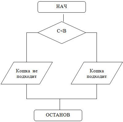 Решение задач с помощью pascal чесфилд решение 6 задачи