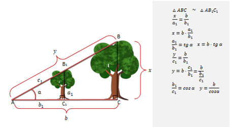 Тригонометрические функции углового аргумента