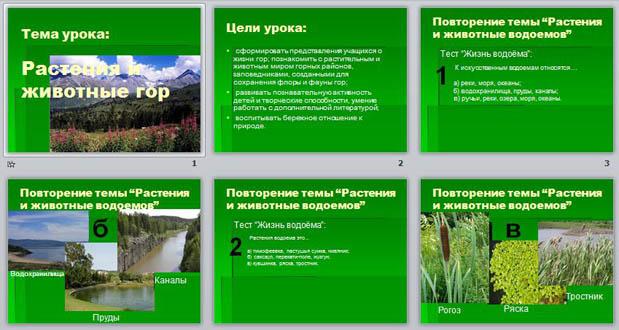 Реферат на тему растения и животные казахстана 1699