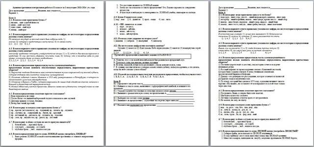 Контрольная работа по русскому языку за е полугодие Контрольная работа по русскому языку за 1 полугодие в 11 классе