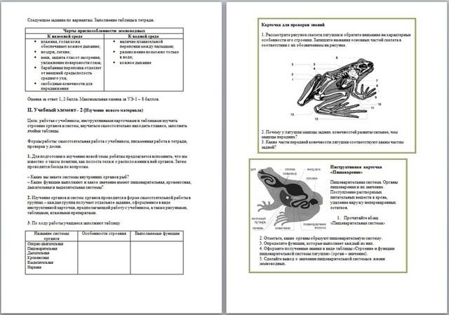 Модульный урок по биологии Внутреннее строение лягушки