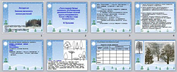 Зимние Явления В Живой Природе Картинки Зимние Явления В Живой Природе  Картинки eccd24ecbeab8