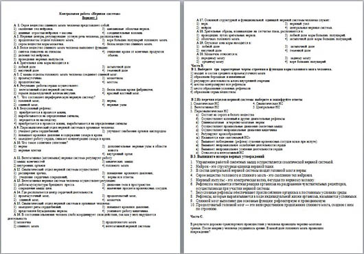 Контрольная работа по биологии по теме Нервная система  Контрольная работа по биологии по теме Нервная система