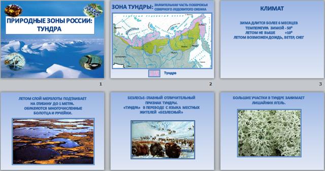 urok-prezentatsiya-po-prirodovedeniyu-4-klass-prirodnie-zoni-rossii