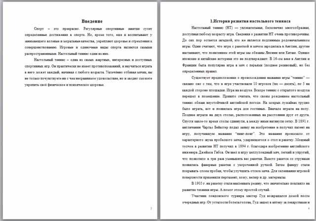 Реферат по физкультуре по теме Настольный теннис  Реферат по физкультуре по теме Настольный теннис