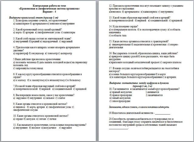 Тест по биологии Кровеносная система Лимфатическая система  Тест по биологии Кровеносная система Лимфатическая система