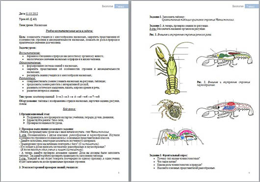 Разработка урока по биологии на тему Насекомые