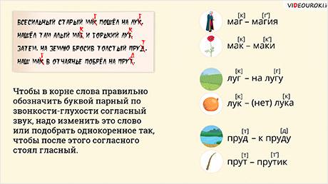 тексты с разделительным твёрдым знаком 2 класс