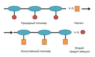 Чем искусственные полимеры отличаются от синтетических